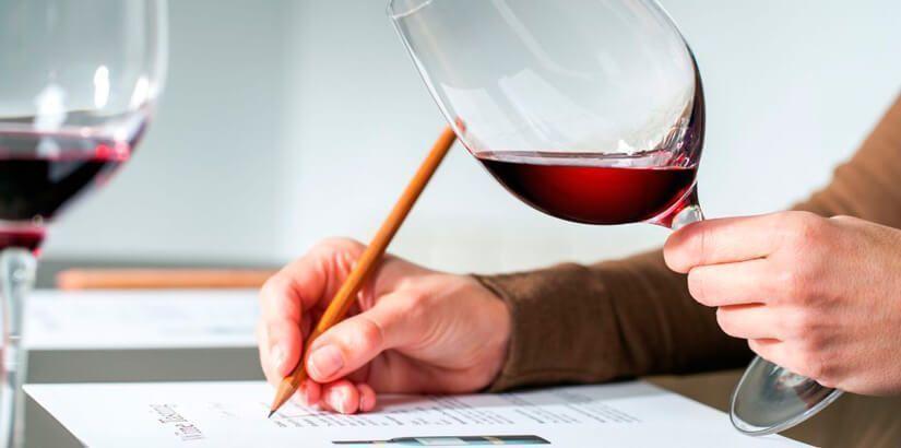 catador de vinos sumiller