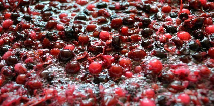 fermentación-del-vino-en-bodegas